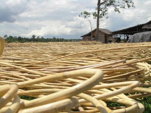 Изготовление ротанговой (плетеной) мебели